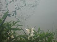 0910 Sun Moon Lake 057