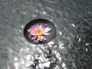 0910 Sun Moon Lake 074