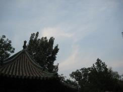 100817 Jin Ci 083