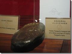1010 Taipei Dilgo Yangsi 012