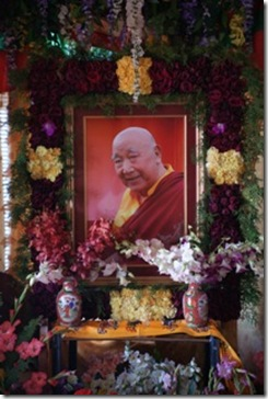 Khen Rinpoche's shrine