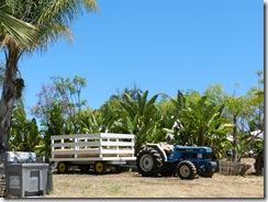110625 Farms 001