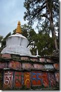 111101 Sikkim 170