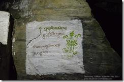 111101 Sikkim 220