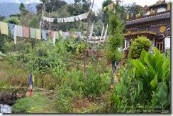111101 Sikkim 324
