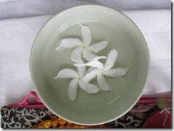 120911 Rajpur flowers 004