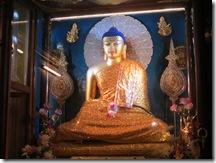 121109 Mahabodhi 001
