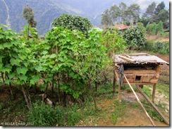 121006 Labdang Village 002(LR)01